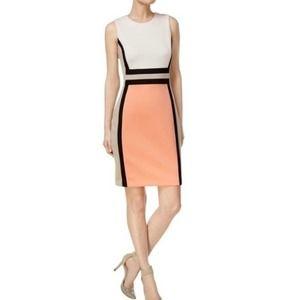 Calvin Klein • Peach Color Block Sheath Dress • 8